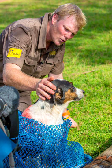 Luke Gambel with a dog in a net.  The dog has been marked with dye to show that he's been vaccinated against rabies.