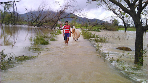 Fleeing from the floods.