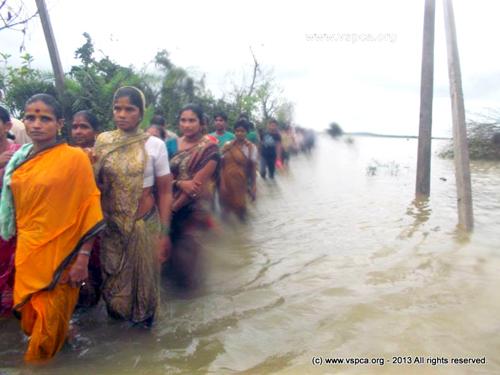 women walking in flood1378189_10153380419905494_872191306_n